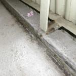 Balkonabdichtung mit Flüssigkunststoff, Stahlgeländerhalter rostet weiter